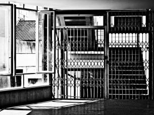 zoo_urbano-1